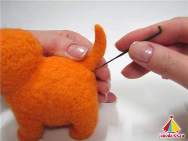 mandarin cat 17