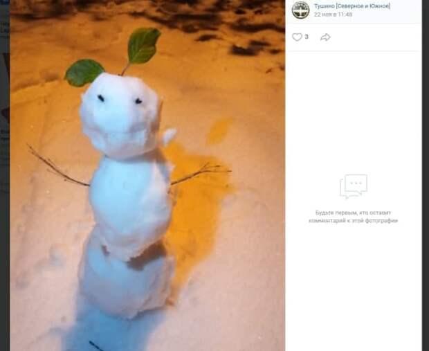Фото дня: снеговик на прогулке