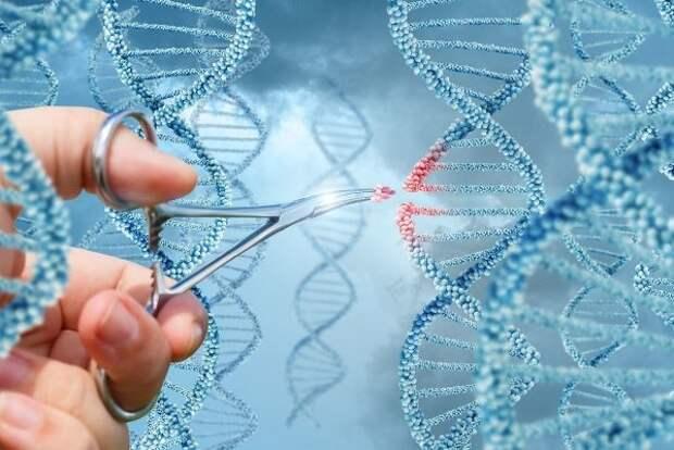 В РПЦ сравнили «генетические ножницы» с ядерным оружием