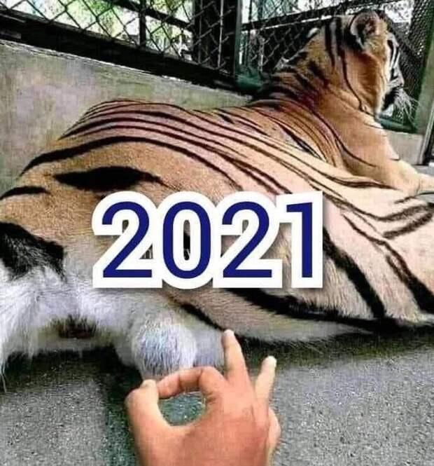 Интересно, что принесёт нам 2021-й год? Это риторический вопрос