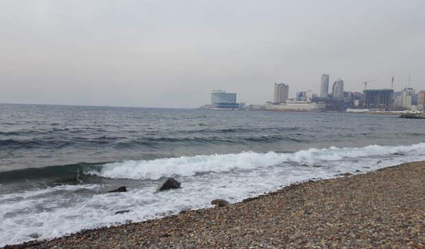 Итоги недели в Приморье: ядовитый груз, первый снег и всё о QR-кодах