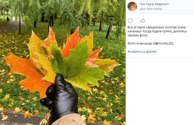 Фото дня:  в Ховрино пришла официальная золотая осень