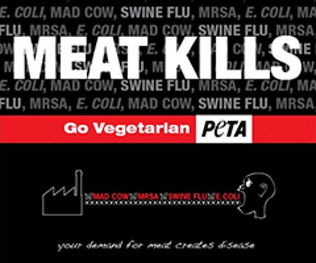 Защитникам животных запретили «дезинформировать» о свином гриппе