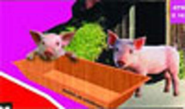 «Калинка» отстояла право на свинство