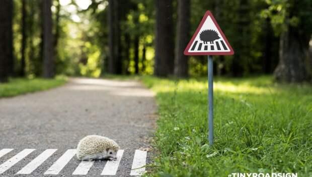 Крошечные дорожные знаки для крошечных жителей Вильнюса