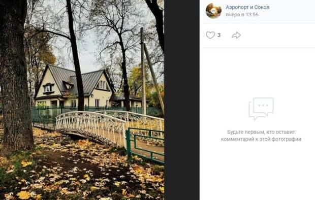 Фото дня: осенние фотокарточки из поселка Художников