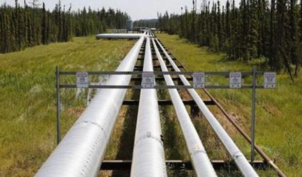 На10% сократился экспорт российской нефти за9 месяцев 2020