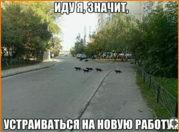 Василиса Прекрасная была приятно удивлена, когда узнала...