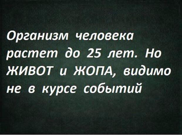 b304c3f8749d62741e5288a31b24e501 (492x367, 140Kb)