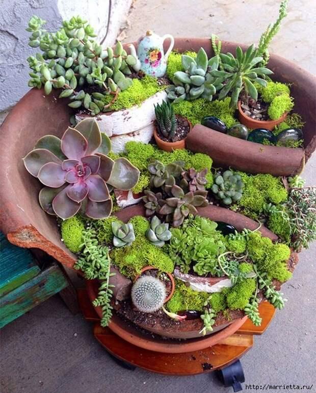 Миниатюрный сад из цветочного горшка. Идеи (12) (563x700, 405Kb)
