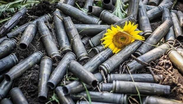 Вооруженные силы ДНР заявили оготовности соблюдать перемирие с1июля