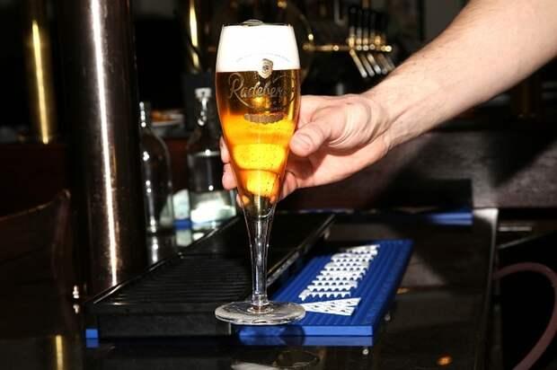 В России предложили запретить чешское пиво в ответ на действия Праги