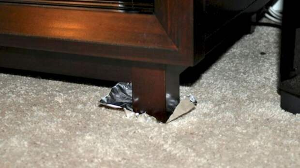 Выдержать шкаф? Легко! /Фото: shared.com