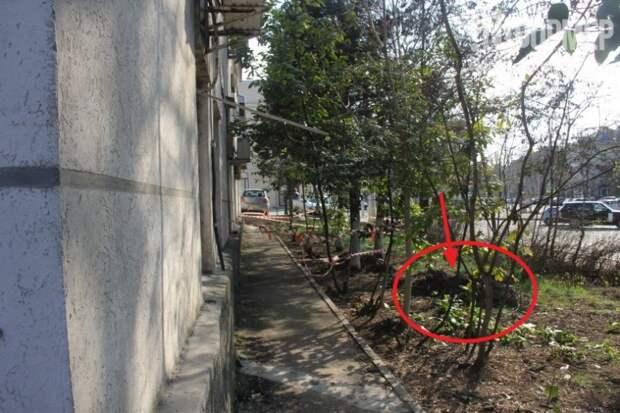 На площади Ушакова севастополец провалился под землю (фото)