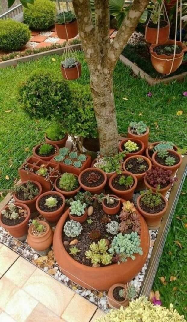 Оригинальная идея для тех, кто любит не только деревья. /Фото: i0.wp.com