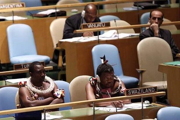 Представители Свазиленд в ООН | Забавные фото, Смешные мемы ...