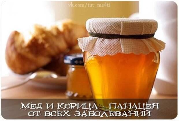 Мед и корица - панацея от всех заболеваний - Велемудр. Мир тесен.