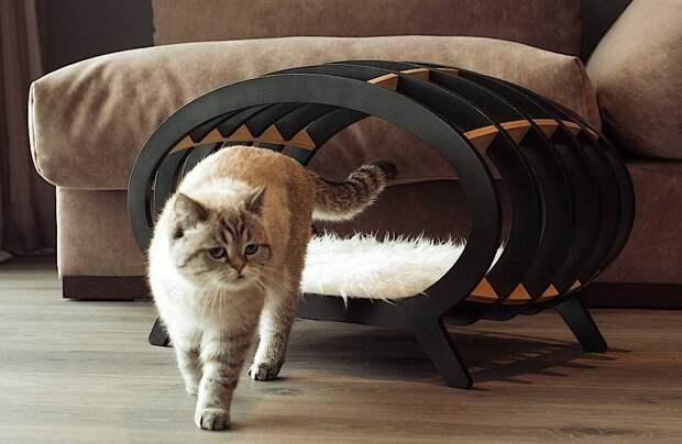 Маска для сна с будильником и квартира для любителей кошек: 4 изобретения японцев
