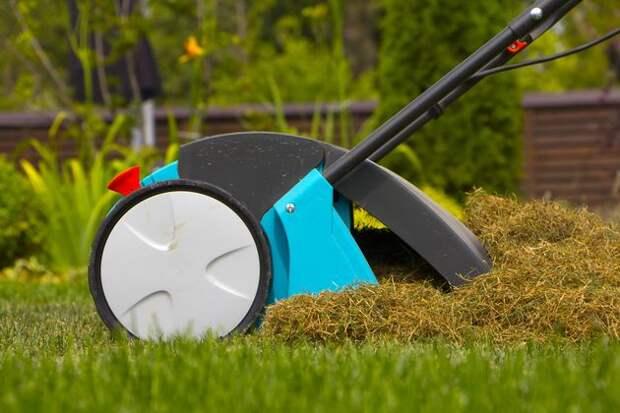 Весенний ремонт газона
