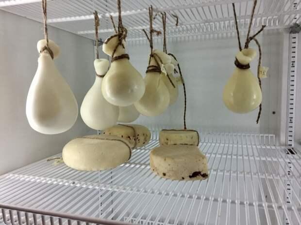 Пошаговый рецепт итальянского сыра качокавалло