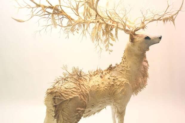 surreal-animal-sculptures-ellen-jewett-11
