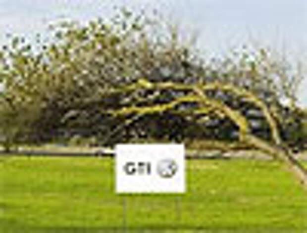 Кривые деревья – заслуга Volkswagen GTI