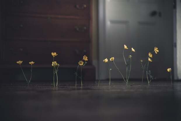 10 фотографий, воспевающих минимализм