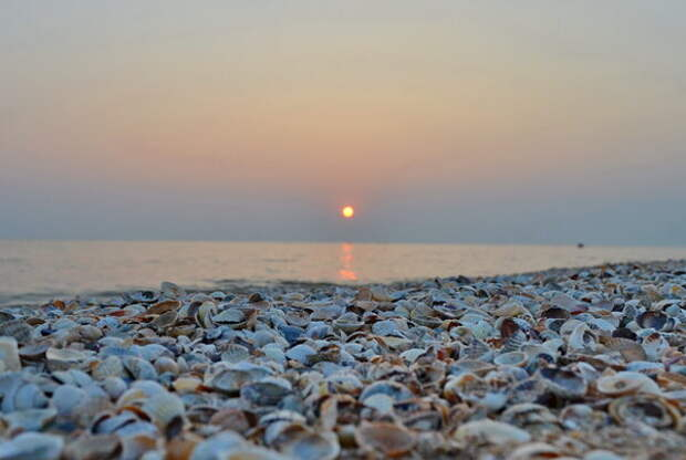 Станица Должанская: плюсы и минусы отдыха на Азовском море