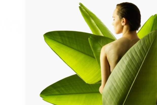 Народные средства при лечении псориаза