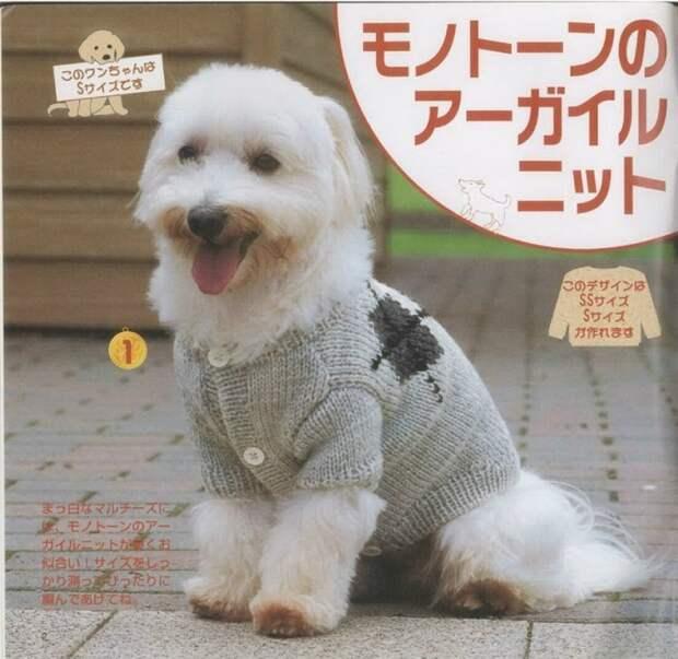 своими руками связать стильный свитерок для собаки