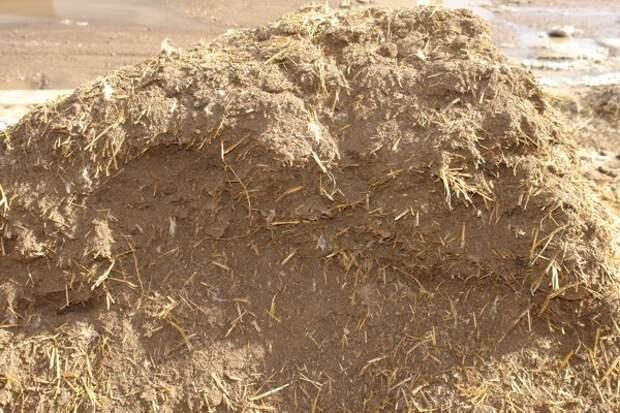 Новосибирский фермер заплатил кредит Сбербанку навозом