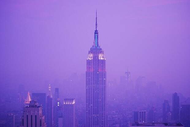 Сиреневый туман