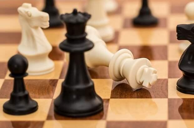 Шахматисты РФ и США встретятся в финале онлайн-олимпиады ФИДЕ
