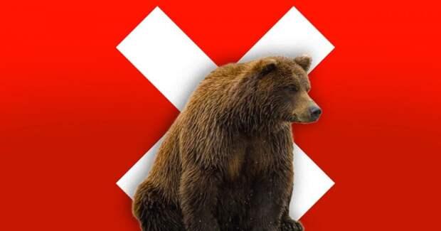 3 ужасных факта, о том, как из-за запрета РПЦ приходится убивать медведей в Крыму