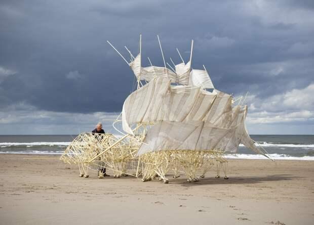 Тео Янсен: человек,который создает скульптуры, управляемые ветром