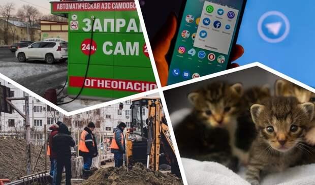 Приговор живодеру изДомбаровки икоммунальный аврал вГае: подводим итоги дня