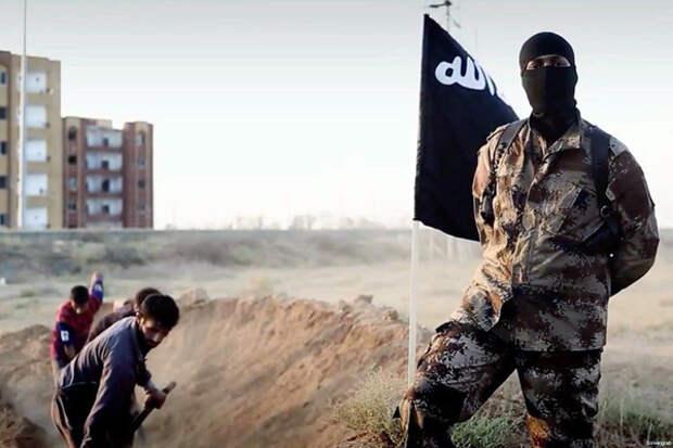 «Талибан» ударит с тыла по «Исламскому государству»