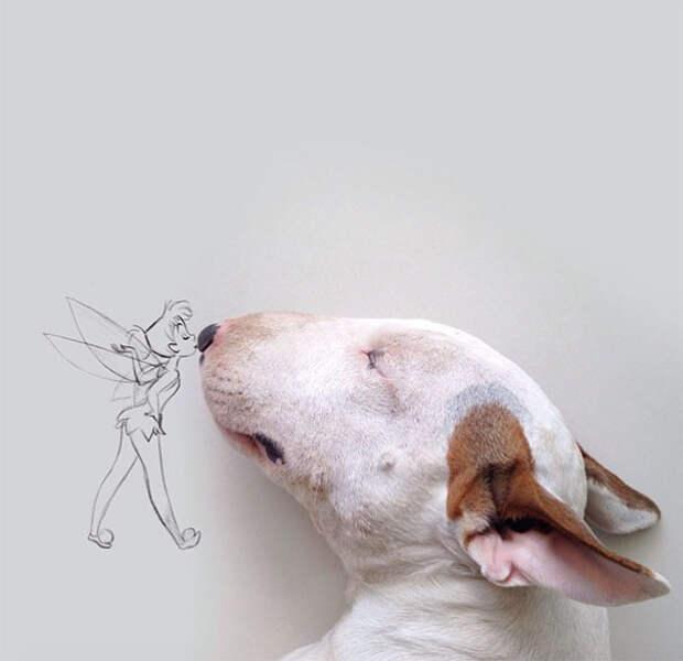 Что делать, когда уходит жена, и остается только пёс?