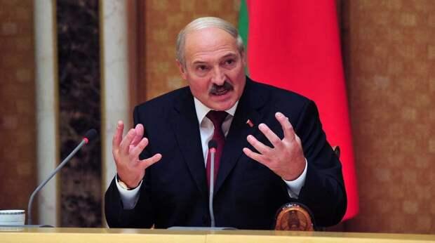 Сына Лукашенко отказались признать главой Олимпийского комитета Белоруссии