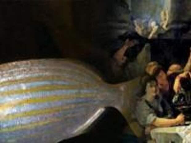 Страх и ненависть в Древнем Риме: галлюциногенная рыба из античности