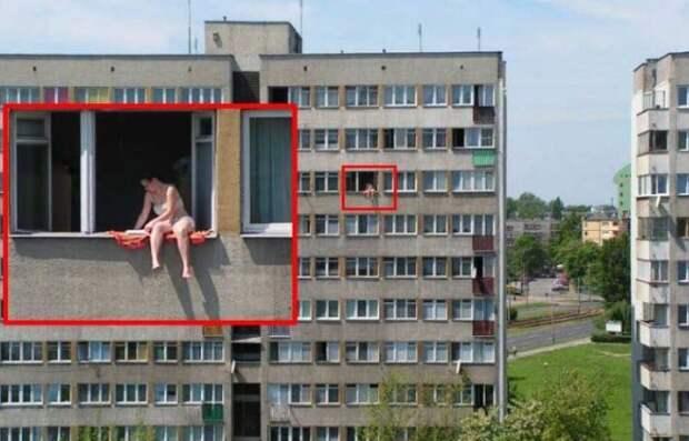 Зачем собственный участок с шезлонгом, когда есть окно?  девушки, животные, прикол, юмор
