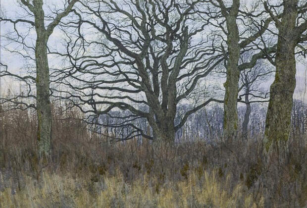 Зимний лес (A wood in winter). 1885 (656x445, 421Kb)