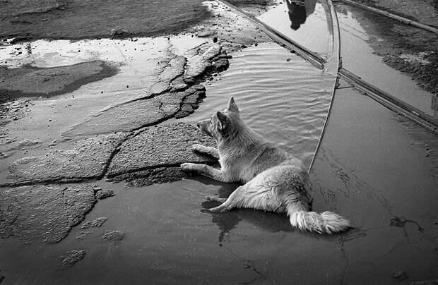 Фотограф Евгений Канаев: «Казань и казанцы в 90-е» 94