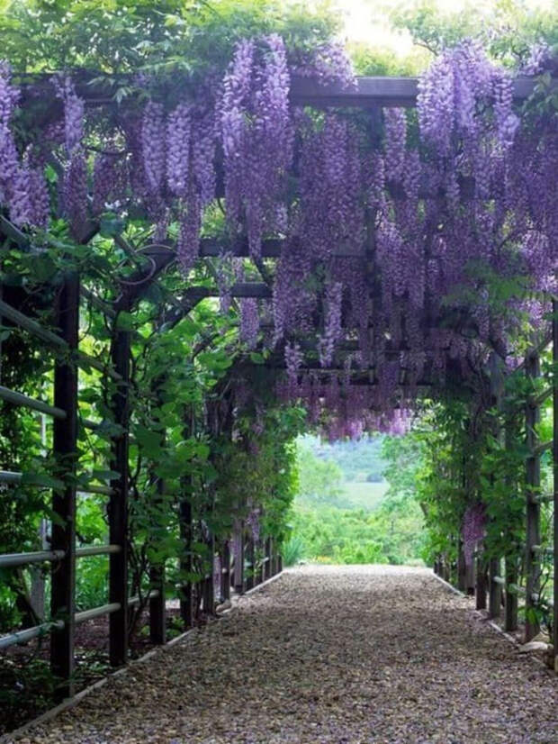 Цветов много не бывает, тем более в саду. /Фото: trend4homy.com