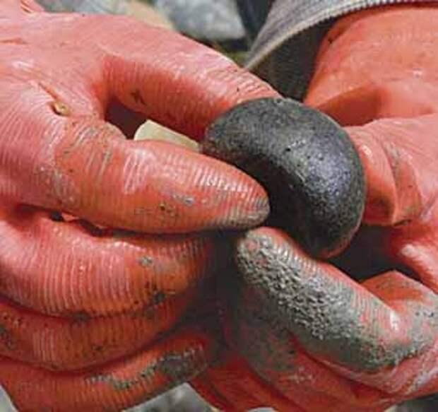 сортируем камни для садовой дорожки