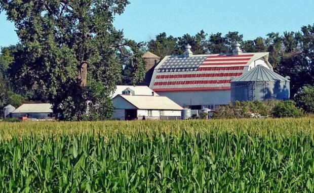 С голодом столкнулись даже американские фермеры – СМИ раскрывают масштабы катастрофы