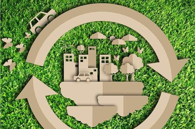 На выставке-форуме «Экотех» представят самый зеленый офис России