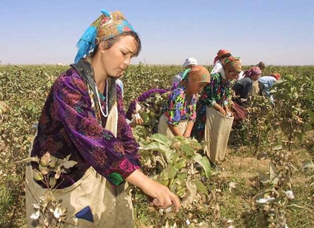 В Узбекистане жизнь еще хуже, чем вы думали