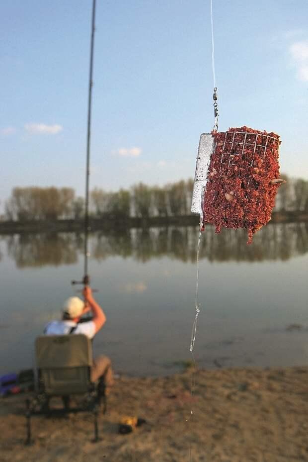 Чтобы собрать рыбу в точке ловли, каждые 30 минут я отправляю большую порцию прикормки.