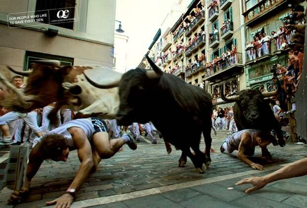 QE Convenience Store: Bulls (Быки)